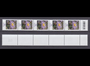 Bund 2463 EAN-CODE RM 5er Streifen mit gerader Nr. Blumen Herbstaster 50 C **
