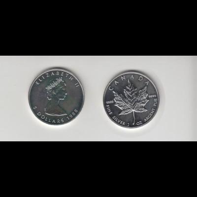 Silbermünze 1 OZ Kanada 5 Dollar 1988 Maple Leaf